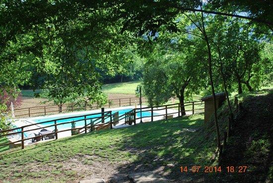 Il Fattoio: vista piscina dalla struttura