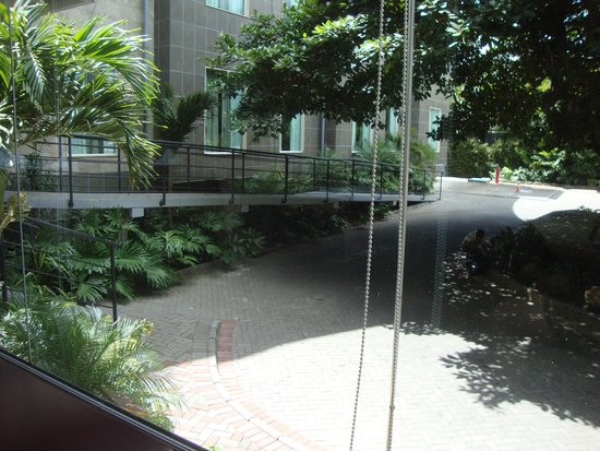 Studio Hotel: View from restaurant -- front driveway