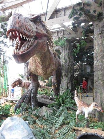 Universeum: Good animatronic dinosaur exhibit - even feathered