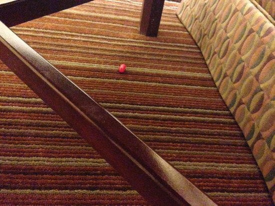 Embassy Suites by Hilton Parsippany: A gift left for me under the end table