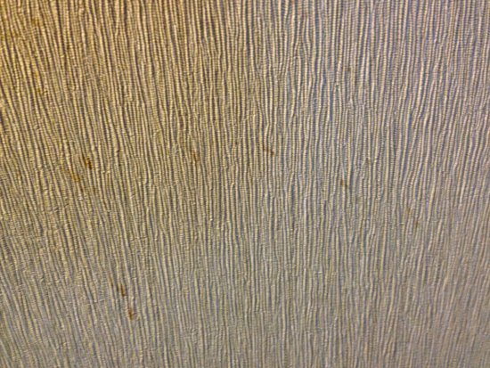 Embassy Suites by Hilton Parsippany: More nasty stains on wallpaper