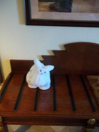 Hotel Riu Vallarta: Habitacion