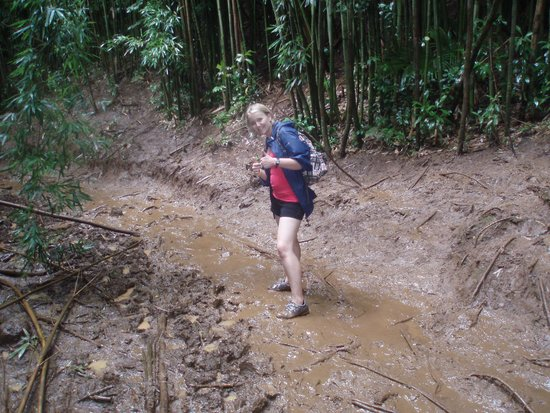 Manoa Falls: A tad muddy at times!