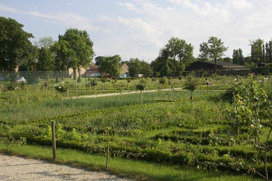 La Chartreuse du Val Saint Esprit : Garden