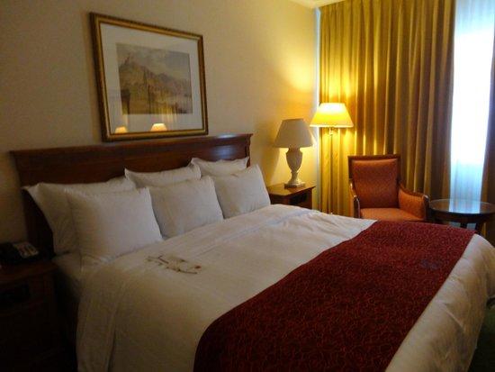 Heidelberg Marriott Hotel: Room