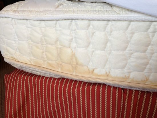 Holiday Inn Secaucus Meadowlands: Pee stains on Mattress