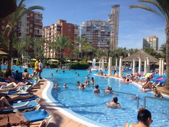 Sol Pelícanos Ocas: Lovely pools