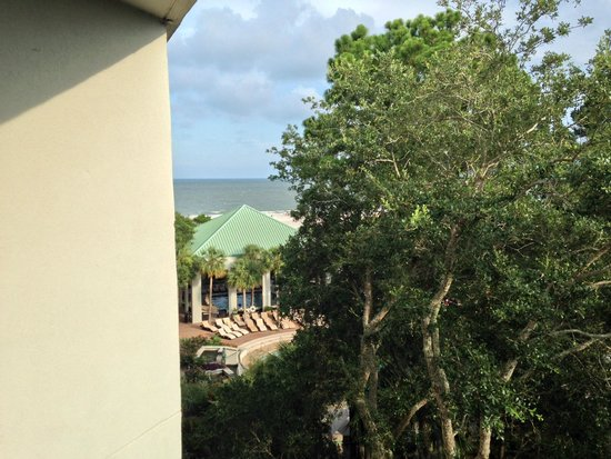 The Westin Hilton Head Island Resort & Spa: View from room