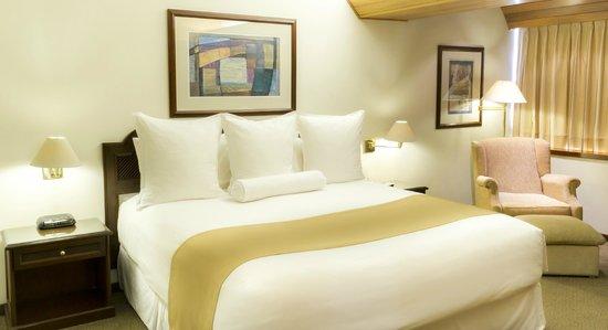 Thunderbird Hotel J. Pardo: Senior Suite