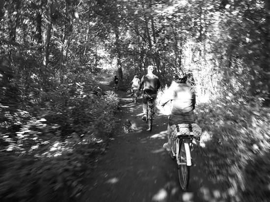 Bicyclean Helsinki: nel bosco