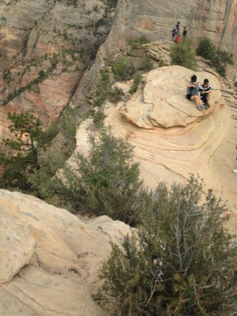 Angel's Landing: Flat area on the very top