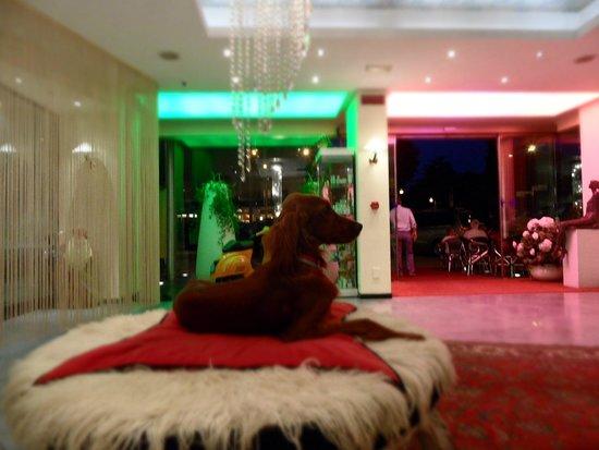 Hotel Ca' di Valle: La hall