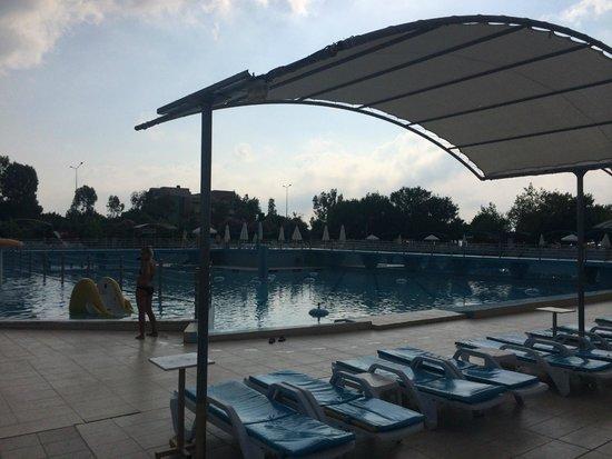Daima Biz Hotel: бассейн