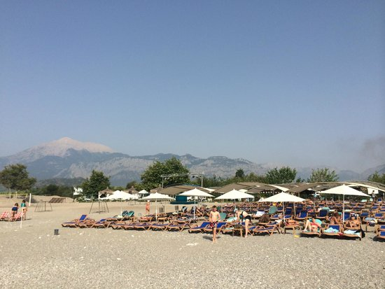 Daima Biz Hotel: пляж