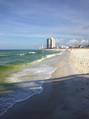 Tidewater Beach Resort: from pier back to resort (green algae was in that week)