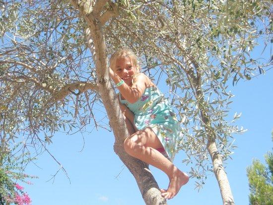 Protur Floriana Resort: Super mooi park