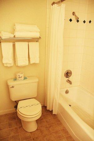 Mariposa Lodge: WC & Wanne