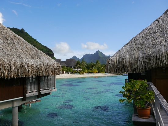 Hilton Moorea Lagoon Resort & Spa: View from overwater bungalows