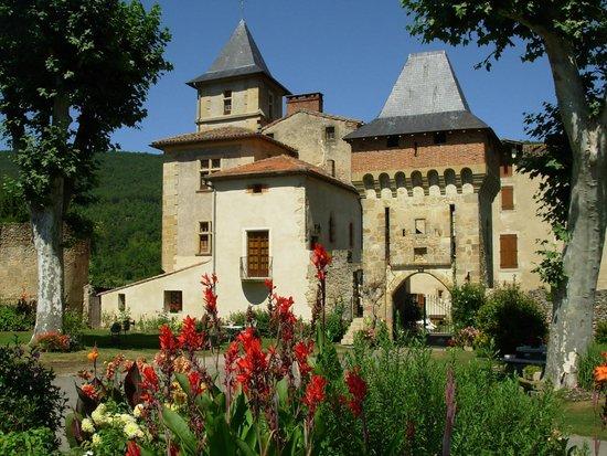 Chateau de la Hille