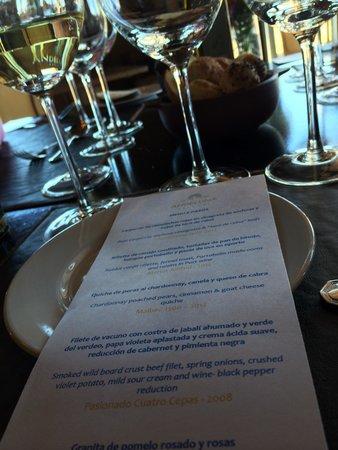 Argentina Wine Tours : Wine pairing lunch at Andeluna - Valle de Uco