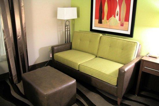 Hampton Inn Oakland-Hayward : Sofa