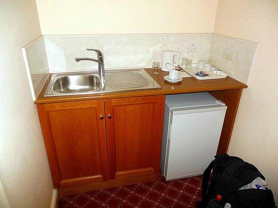 Viking Hotel: Mini fridge and sink
