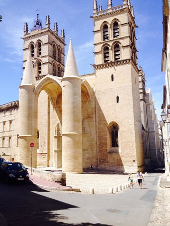 Cathedrale St-Pierre: Cathedrale 7/14