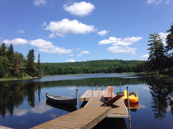 Algonquin Eco-Lodge : Water front