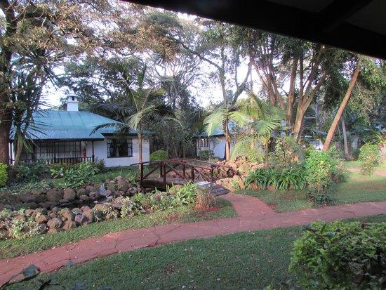 Tamambo Karen Blixen: A beautiful view from our veranda