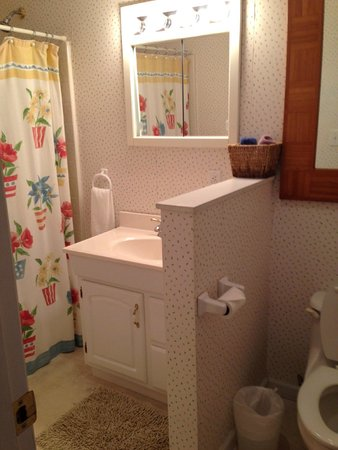 Taylor House Inn : Bathroom in the Little Room, Red Cottage