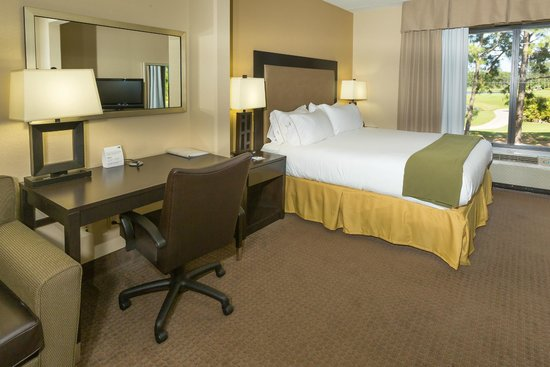 Holiday Inn Express & Suites Jacksonville - SE Med Center Area : King Bed