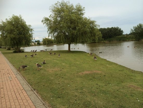 Southview Leisure Park - Park Resorts: Park Grounds