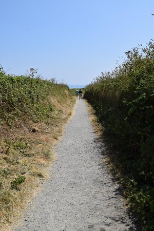 Lizard Lighthouse Heritage Center: This is the path you can walk down to get to the lighthouse from Lizard village