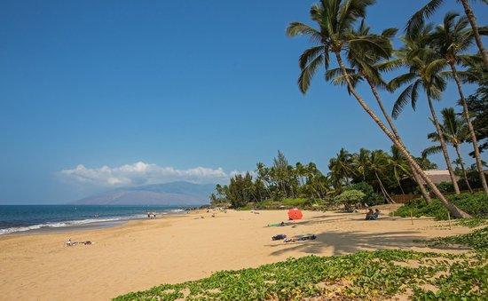 Maui Coast Hotel: Kamaole Beach I