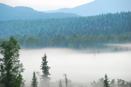 Clearwater Springs Ranch : 4:30am morning fog over the valley.