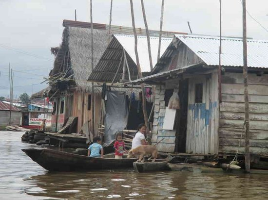 Guia Iquitos Marlon Ashanga - Day Tours