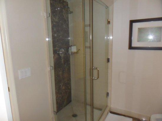 Hilton Fort Lauderdale Beach Resort : Room 1103 Walk In Shower