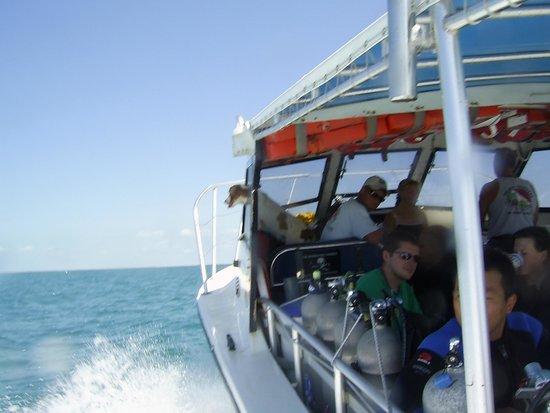 Island Ventures: Under way...