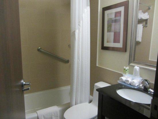 Holiday Inn Express New York - Manhattan West Side: bathroom