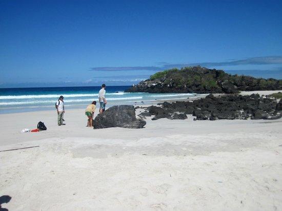 Puerto Chino Beach : the beach