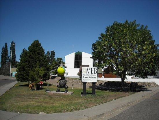 Villa El Chocon, Argentina: Entrada al museo