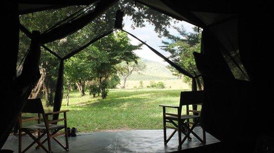 Enkewa Camp : Desde dentro de la tienda en Enkewa Bush Camp