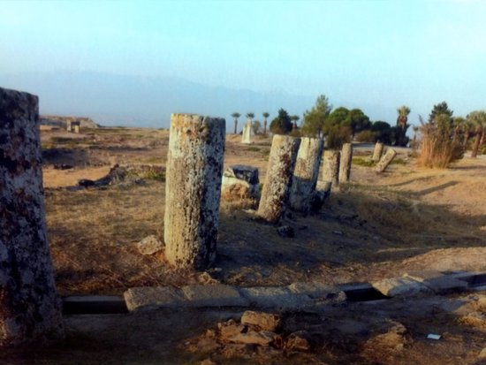 Ruines de Delphes : Delfos