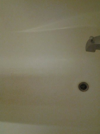 Studio 6 Lafayette- Broussard: Floor of shower...not sure if stained or mold. Don't want to find out.