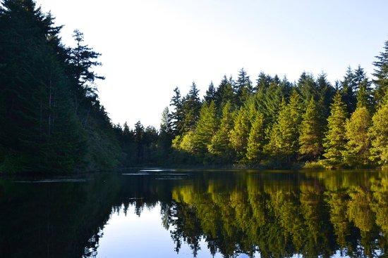 Lakedale Resort at Three Lakes: Lake