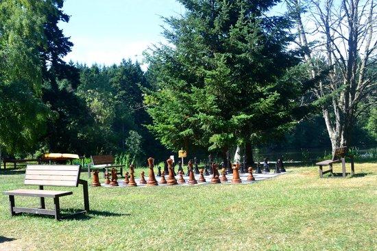 Lakedale Resort at Three Lakes: Life size chess