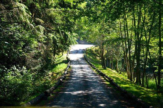 Lakedale Resort at Three Lakes: Path to Lakedale Resort