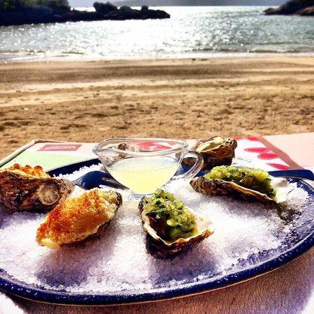 Ponta dos Ganchos Exclusive Resort: degustação de ostras