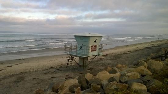 Hotel Indigo San Diego Del Mar : Beach at Torres Pines park