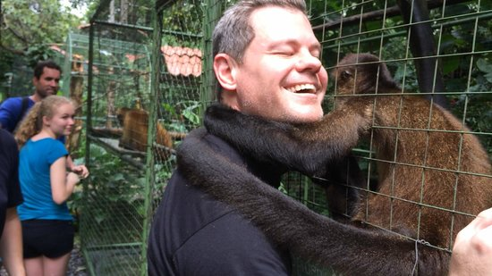 Proyecto Asis: The Spider Monkeys are very affectionate!